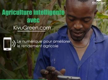 Kivu green